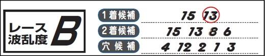 チェック_0106京都10Rチェックホース