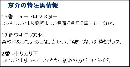 ガチ_1104東京6R