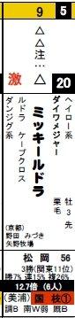 データ新聞_0126東京2Rミッキールドラ