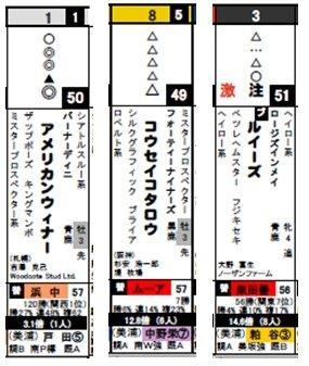 データ_日東京8R激走馬