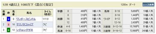 最終_0224阪神12R払戻し