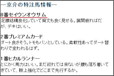 ガチンコ_特注土曜中山8R