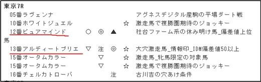 データ_1007日東京7R