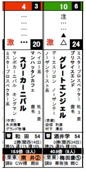 データ新聞_0127京都2R
