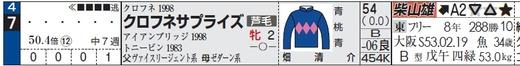 チェック_1209日阪神11クロフネ