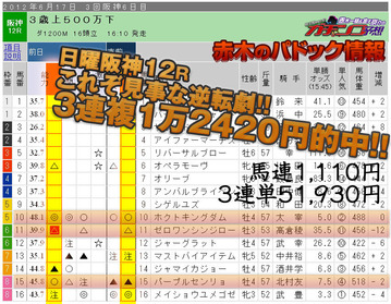 ガチンコ_6月17日阪神12R1