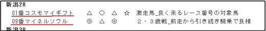 データ_0826日新潟2R