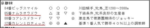 データ_1104日京都9R