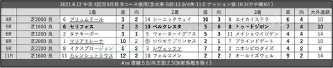 2021.6.12 中京 4回目3日目 Bコース使用