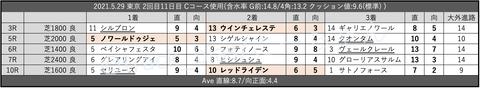 2021.5.29 東京 2回目11日目 Cコース使用