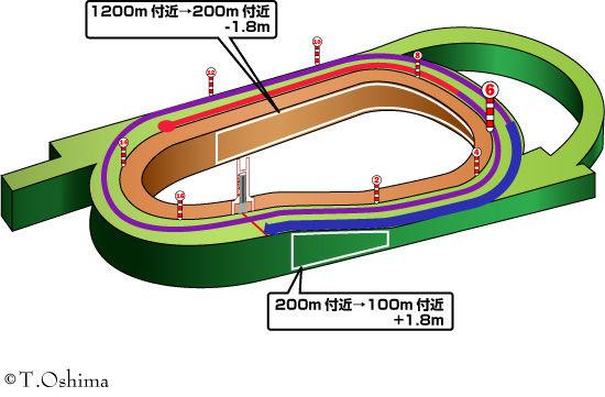阪神芝3000m
