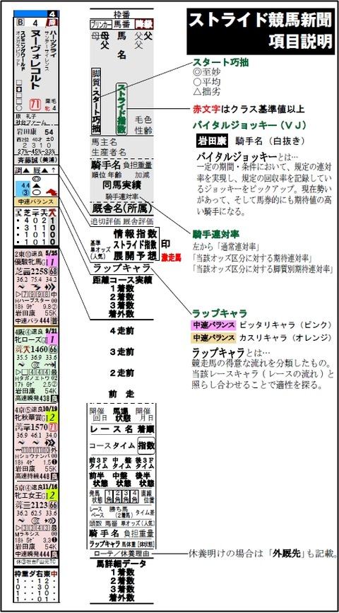 ストライド競馬新聞解説書_縦
