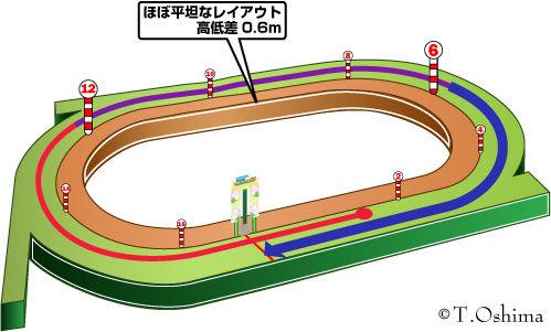 札幌芝1800m