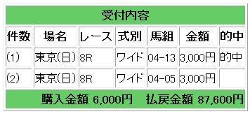 東京8レースワイド