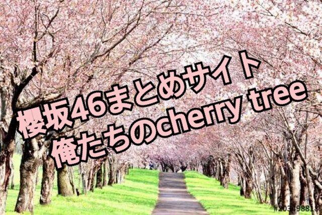 まとめ 46 日 サイト 向坂