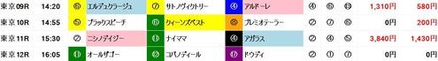 超人1117東京後半レース推奨馬