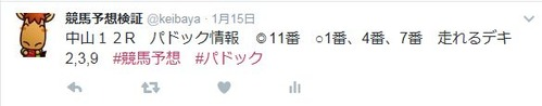 twitterパドック情報0115中山12R