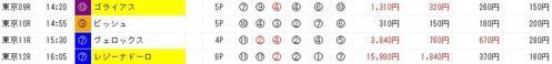 ジャッジメント1117東京後半レース単勝万馬券的中