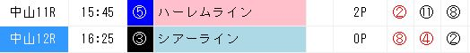 ジャッジメント活用0311中山12R