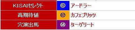 KISAI0721中京11R推奨馬