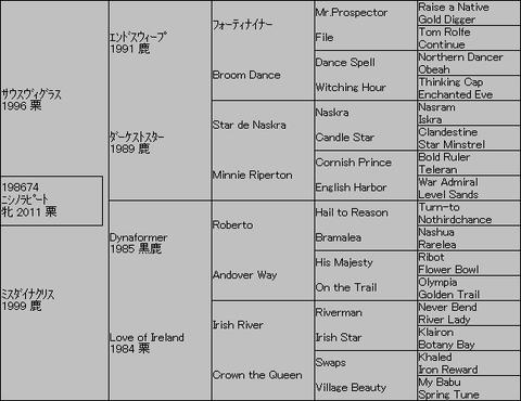 ニシノラピート5代血統表
