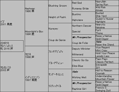 クロノジェネシス5代血統表