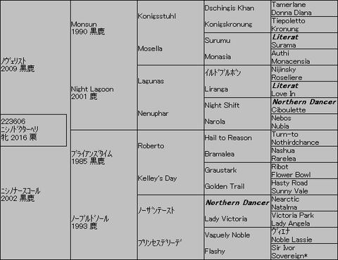 ニシノドクターヘリ5代血統表