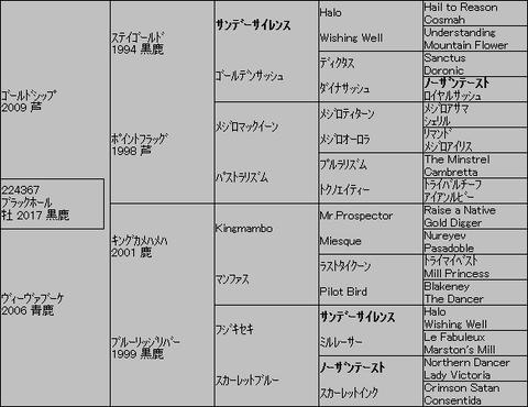 ブラックホール5代血統表