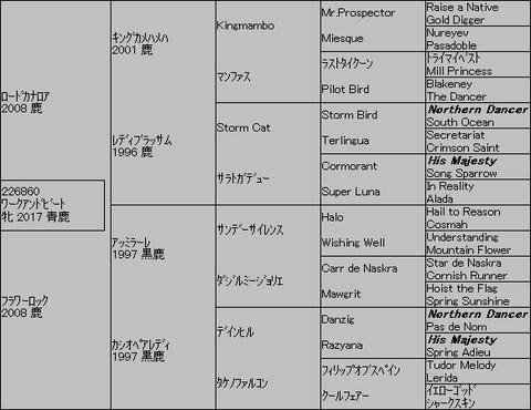 ワークアンドビート5代血統表