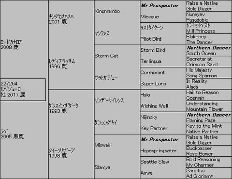 カバジェーロ5代血統表