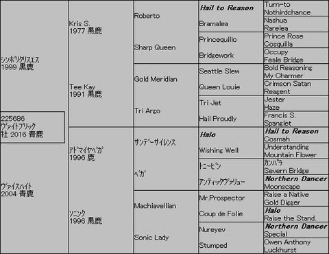 ヴァイトブリック5代血統表