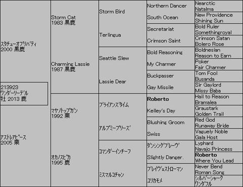ワンダーリーデル5代血統表