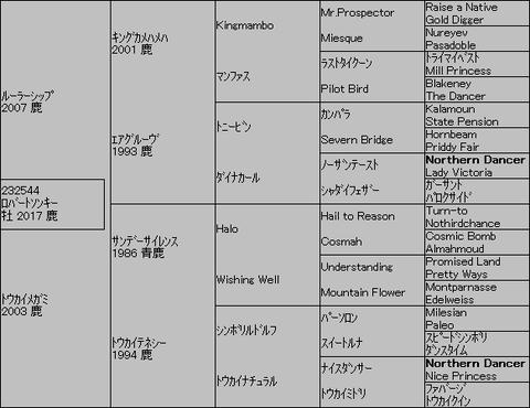 ロバートソンキー5代血統表