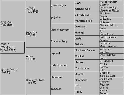 スマートオーディン5代血統表