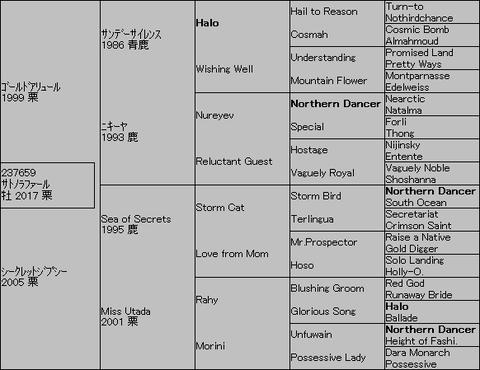 サトノラファール5代血統表