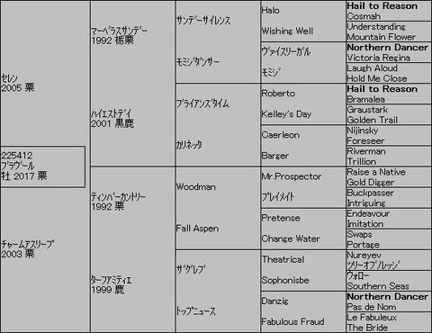 ブラヴール5代血統表
