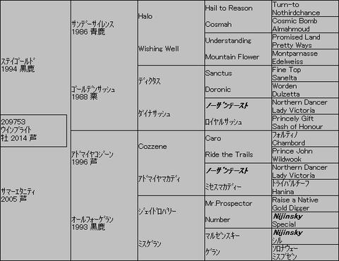 ウインブライト5代血統表