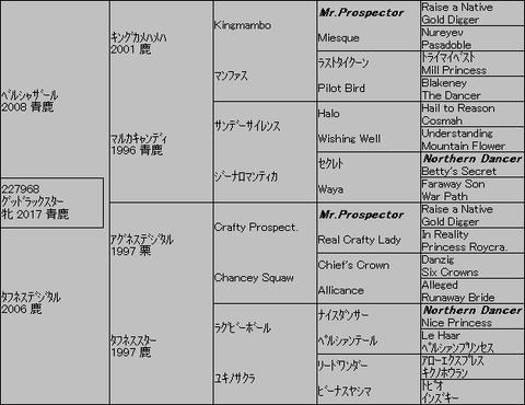 グッドラックスター5代血統表
