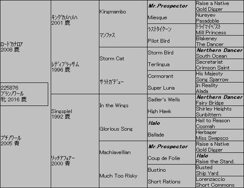 ブランノワール5代血統表