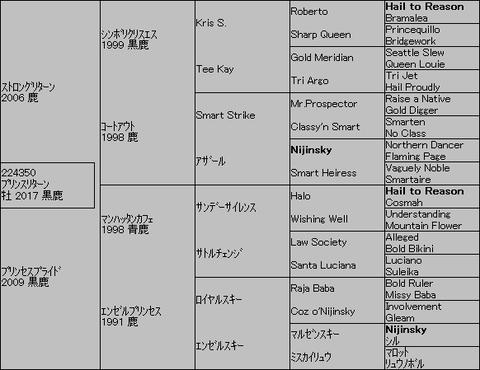プリンスリターン5代血統表