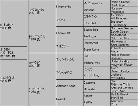 トロワゼトワル5代血統表