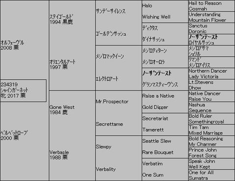 シャインガーネット5代血統表