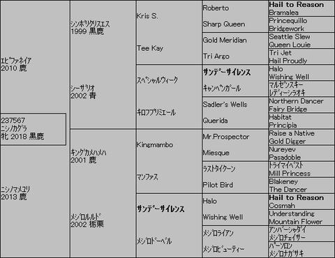 ニシノカグラ5代血統表