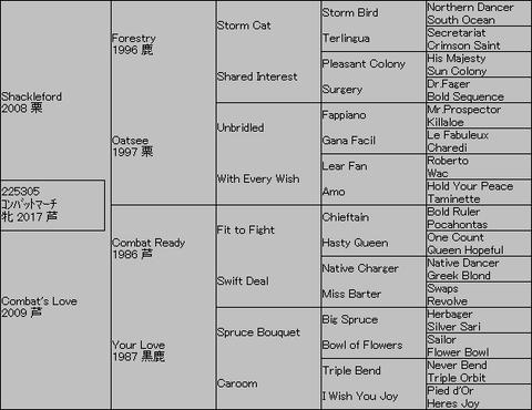 コンバットマーチ5代血統表