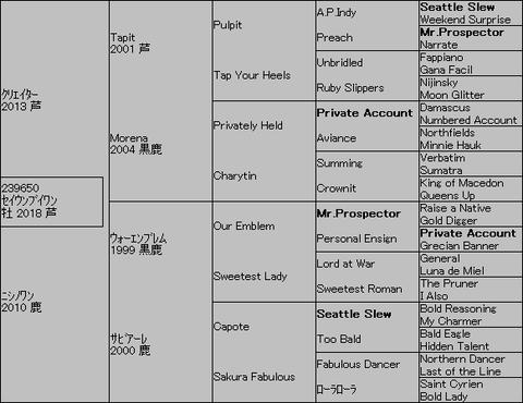 セイウンブイワン5代血統表
