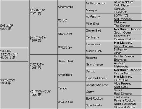 ヤマカツマーメイド5代血統表