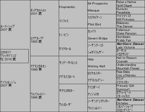 ヴァンケドミンゴ5代血統表