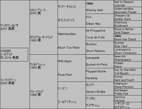 エールヴォア5代血統表