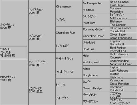 ニシノメタル5代血統表