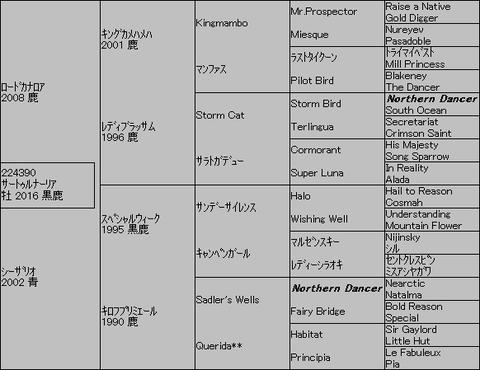 サートゥルナーリア5代血統表